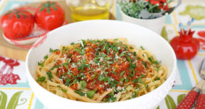 Tomato Sauce Spaghetti Recipe